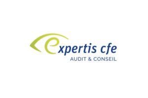 expertis copie